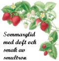 Sommarglid smultron 50 ml